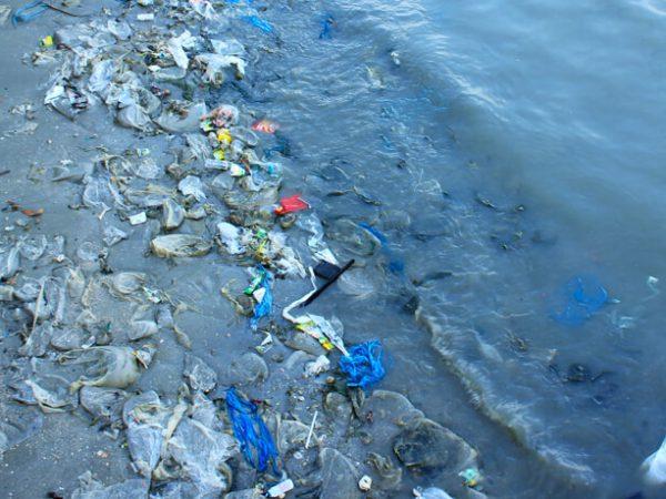 بازیافت آب و تصفیه پساب